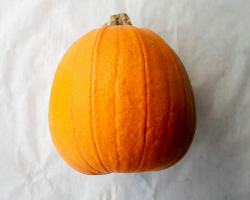 Medium Pumpkin2