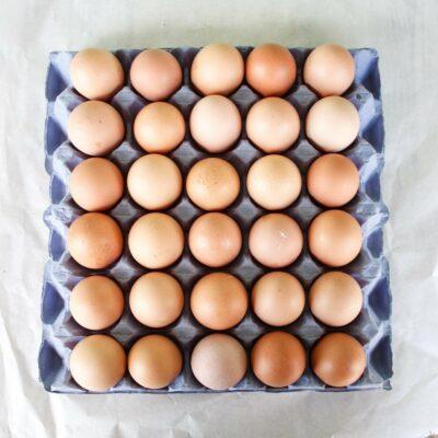 Medium Chicken Eggs