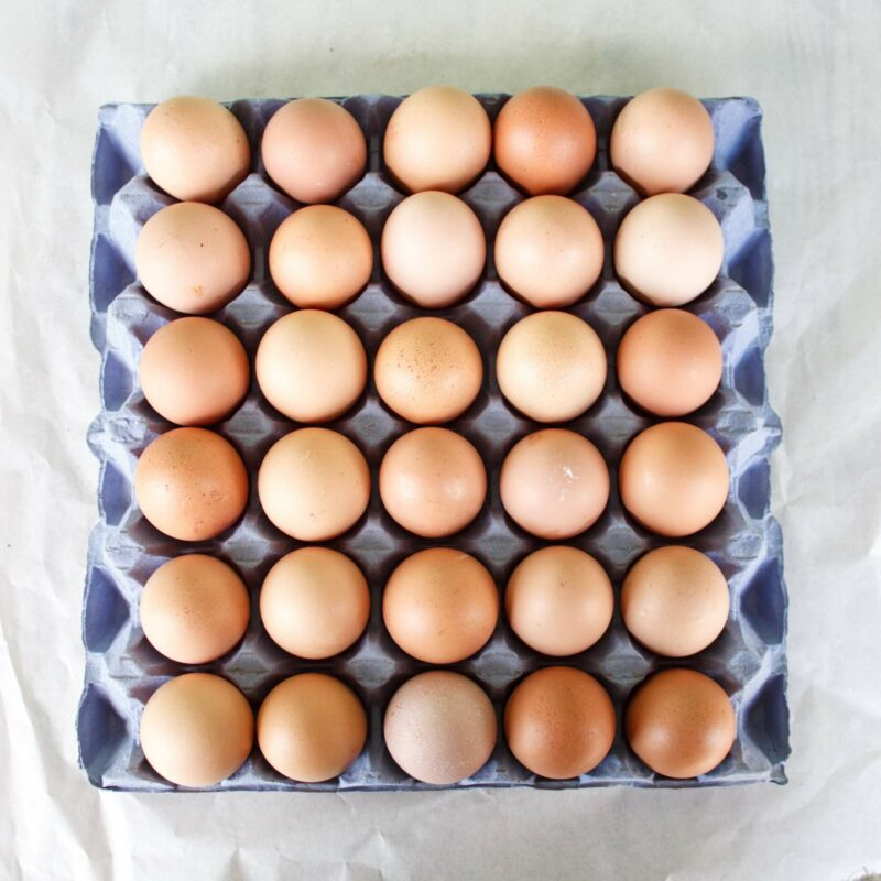 Medium Chicken Eggs