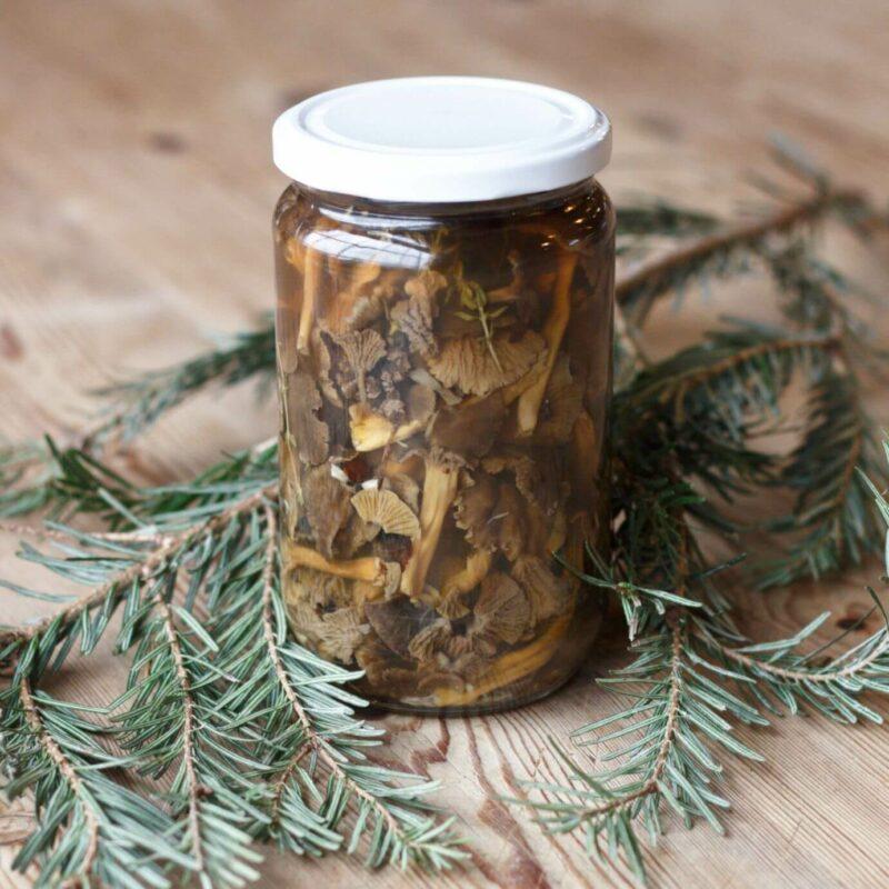 Pickled Chanterelle