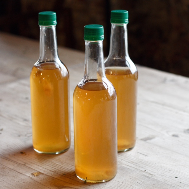 Marmalade Kombucha