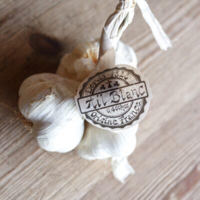 White Garlic French