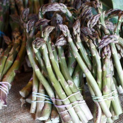 Asparagus Sqaure