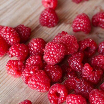 Raspberries Square
