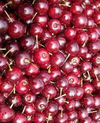 Morello Cherries