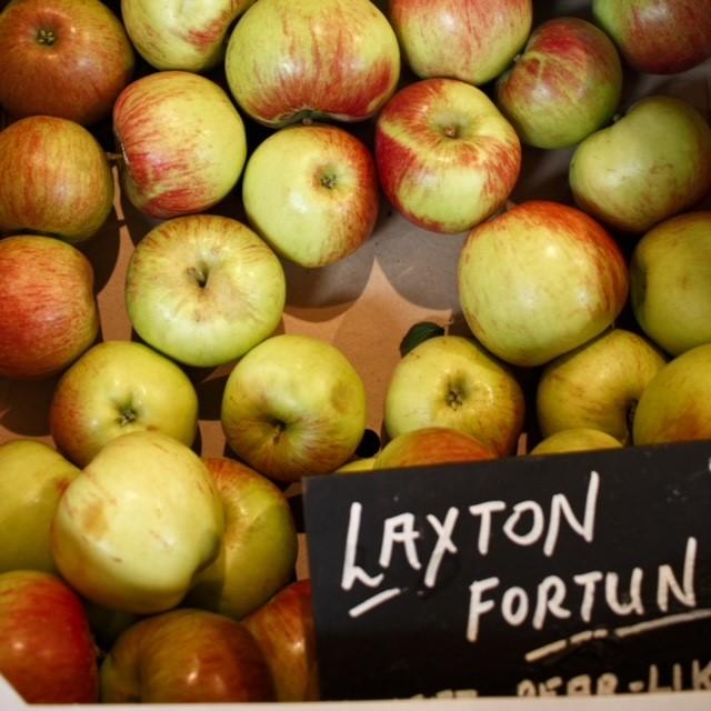 Laxton Fortune